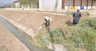limpiesa de arroyos (2)
